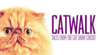 Catwalk: Tales from the Cat Show Circu (2018)