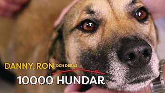 Danny, Ron och deras 10 000 hundar (2018)