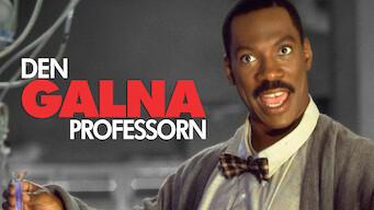 Den galna professorn (1996)