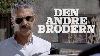 Den andre brodern (2017)