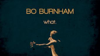 Bo Burnham: what. (2013)