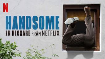 Handsome: En deckare från Netflix (2017)