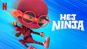 Hej ninja (2019)