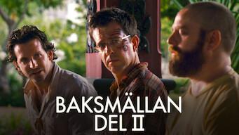 Baksmällan Del II (2011)