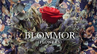 Blommor (2014)