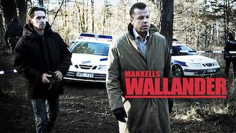 Wallander (2013)