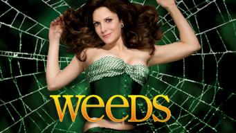 Weeds (2012)