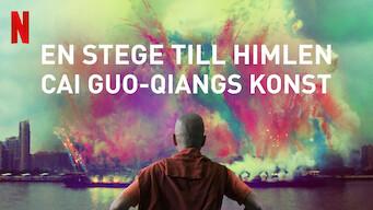 En stege till himlen: Cai Guo-Qiangs konst (2016)