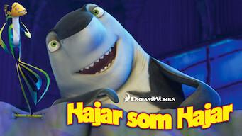 Hajar som hajar (2004)