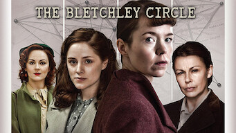 Bletchley circle (2014)