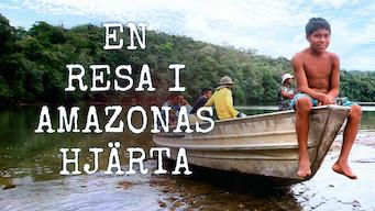 En resa i Amazonas hjärta (2019)