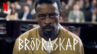 Irmandade – Brödraskap (2019)