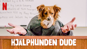 Hjälphunden Dude (2020)