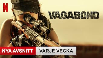 Vagabond (2019)