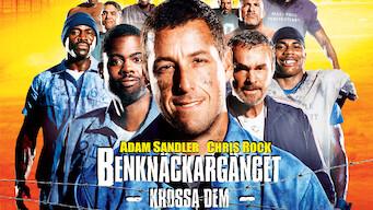 Benknäckargänget (2005)