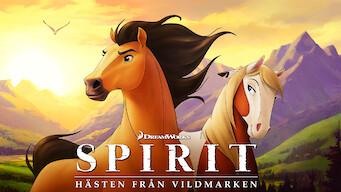 Spirit: Hästen från vildmarken (2002)