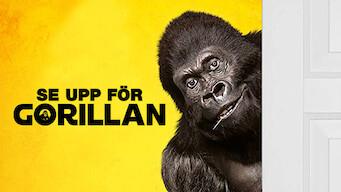 Se upp för gorillan (2019)
